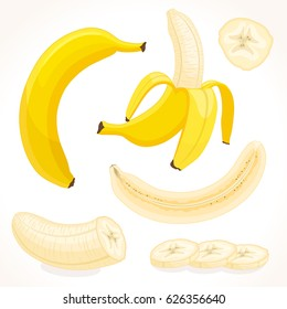 Vector banana in various forms. Whole, sliced, half of banana isolated on white background. Illustration in cartoon style.