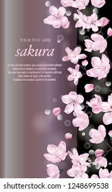 Vector banner with Cherry Blossom. Blossoming sakura branch on black. Template for invitation, sales, packaging, cosmetics, perfume. Space for text.