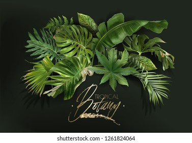 Vector banner with green tropical leaves on dark green background. Luxury exotic botanical design for cosmetics, spa, perfume, aroma, beauty salon, travel agency, florist shop