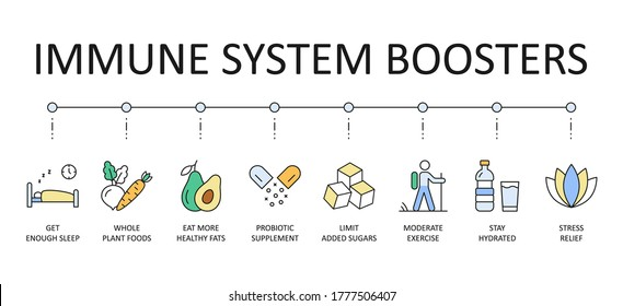 Vector banner immune system boosters. Colored icons editable stroke. Get enough sleep whole plant foods, eat more healthy fats probiotic supplement. Limit added sugars moderate exercise, stress relief