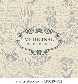 Vector banner or label for medicinal herbs in retro style. Hand-drawn background with medicinal herbs and handwritten text Lorem Ipsum