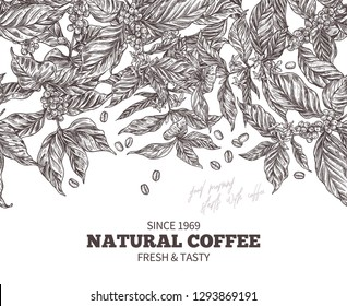 Vector banner template with branches of coffee tree with flowers, leafes, berries and beans. Hand drawn design with sketch vintage engraving botanical and floral illustration. Seamless border pattern