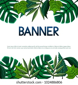Vector banner,poster,invitation card design with tropical and simple leaves.
