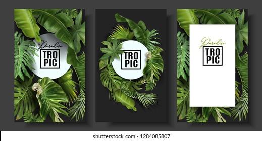 Векторные баннеры с зелеными тропическими листьями на черном фоне. Экзотический ботанический дизайн для косметики, спа, парфюмерии, салона красоты, турагентства, флориста магазин. Лучший в качестве свадебных пригласительных открыток