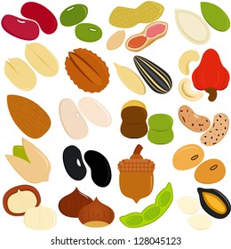Vector of Beans, Nuts, Seeds - red green beans, peanut, pumpkin seed, macadamia, pistachio, cashew nut, walnut, etc. A set of cute and colorful icon collection isolated on white background