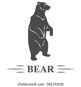 vector bear, bear posing standing, watching, white background, isolated. T - print