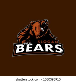 vector of bears sport logo
