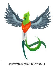 Vector beautiful flying quetzal bird symbol of Guatemala isolated on white background. Children alphabet illustration letter Q.