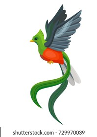 Vector beautiful flying quetzal bird symbol of Guatemala isolated on white background. Children alphabet illustration letter Q.
