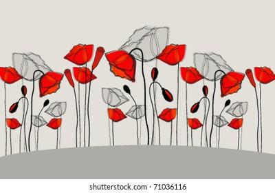 Vector beautiful poppies illustration
