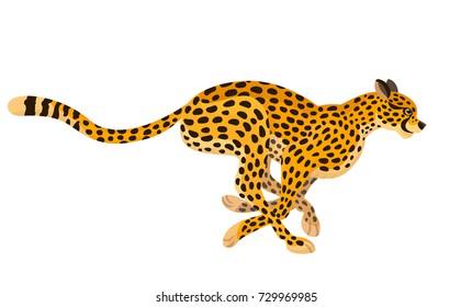 Vector beautiful running cheetah big wild cat animal, children alphabet illustration letter C