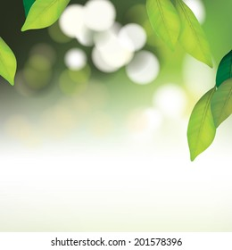 Vector Beautiful Spa Background with Leafs for Family, Health-care, People