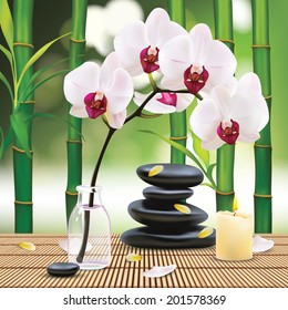 Vector Beautiful Spa Composition With Zen Stones and Orchid, Illustration, Wallpaper for Family, Health-care, People