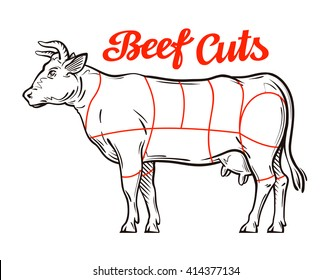 cattle body unlabeled diagram schematic wiring diagram  cattle body unlabeled diagram #2
