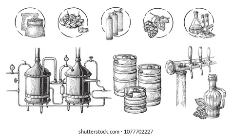 Vector beer infographics with illustrations of brewery process. Ale producing design. Hand sketched lager production scheme.