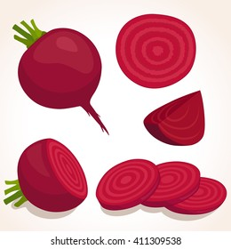 Vector beets isolated on background. Red beetroot whole, cut, sliced. Set of fresh beets in different forms.