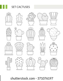 Vector big collection of cactuses in pots logo made line style.
