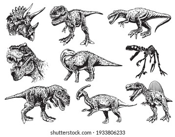 Vector big set of dinosaurs on white background,illustration,elements