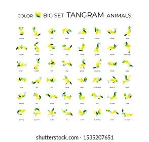 Vector big set of tangram animals. 48 color isoliron icons on a white background. Tangram children brain game cutting transformation puzzle vector set.
