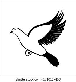 Vector Bird Flat Designs.Bird Designs.Vector Fly Bird