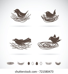 Vector of Bird and Nests on white background.