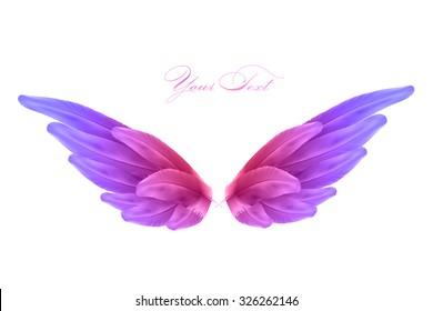 vector bird wings