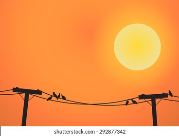 Vector : Birds on electricity post before sun set