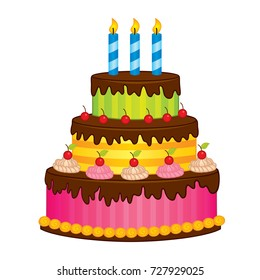 Vector birthday cake with candles. Vector cake decorated with berries and chocolate. Cake vector illustration