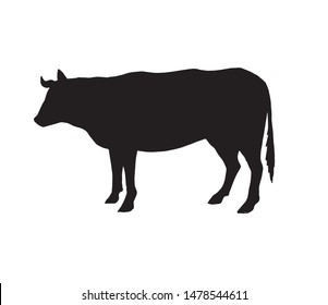 Vector black cow silhouette isolated on white background