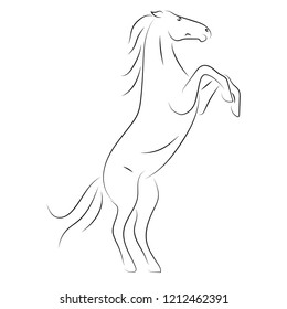 Vector black line horse on hind legs on white background.