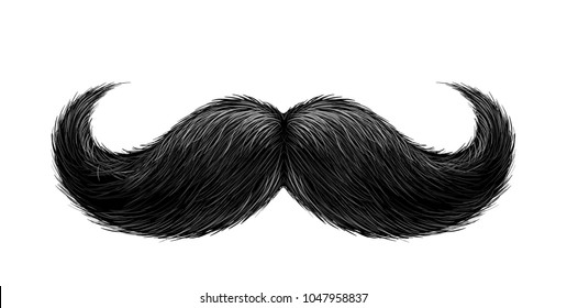 Vector black mustache. Gentleman curled facial hairstyle, barbershop decoration design symbol. Realistic isolated background illustration