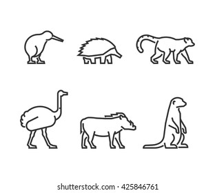 Vector black outline set of animals. Line silhouettes wild animals isolated on white. Modern icons kiwi, echidna and lemur. Linear symbol ostrich, warthog and meerkat.