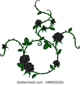 Vector black rose vine isolated on a white background.