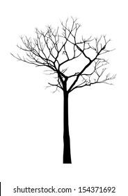 vector black silhouette of a bare tree