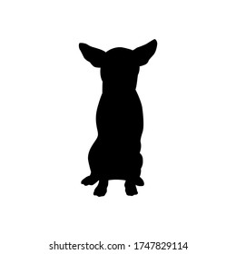 Vector black silhouette of chihuahua dog isolated on white background