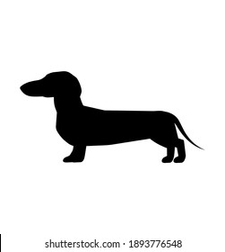 Vector black silhouette of a dog isolated on a white background.