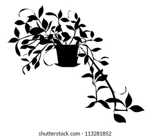 Vector Black Silhouette of House Plant Isolated on White Background