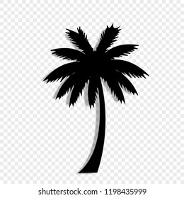 Vector black silhouette illustration of palm tree icon isolated on transparent background.