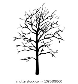 Vector Black Silhouette of Single Bare Tree