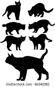 Vector black silhouettes of cats. All objects are separated, the can be scaled or recolored without problems and quality loss.