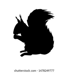 Vector black squirrel silhouette isolated on white background
