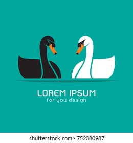 Vector of black swan and white swan on blue background, Logo, Symbol, Animal.