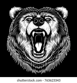 Vector Black and White Bear Face Illustration