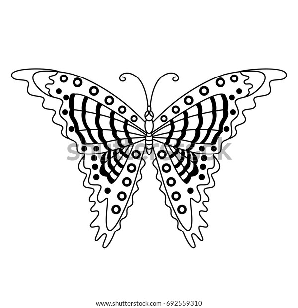Vector black and white butterfly. Butterfly vector illustration
