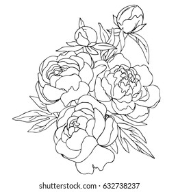Simple flower outline images stock photos vectors shutterstock vector black white contour simple sketch of peony flowers mightylinksfo