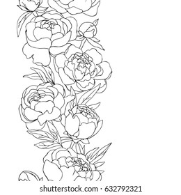 vector black white contour simple sketch of  peony flowers