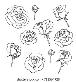 vector black white contour simple illustration of rose flower collection
