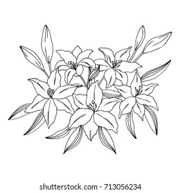 Simple flower outline images stock photos vectors shutterstock vector black white contour simple illustration of lily flowers bouquet mightylinksfo
