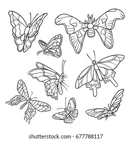 Vector black and white doodle set of hand-drawn. Different tropical butterflies flying and sitting. Outline drawing sketch kit drawn in ink isolated on white background