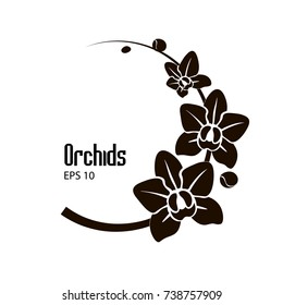 Vector black and white flowers of orchid on the round branch.